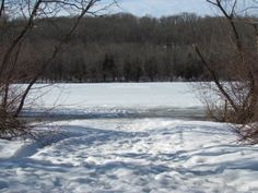 The view today on my hike:  Frozen Lake Galena  Peace Valley Nature Park  Doylestown, PA  Photography by Dianne Furphy, Create What You Want