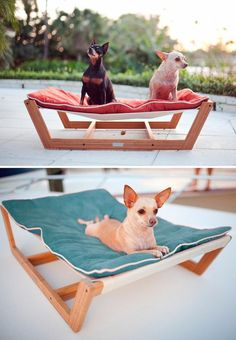 Modern pet hammock....i do not have dogs..& never will..but somehow..I visualize Kilo Dootson on this! Pallet Dog Beds, Outdoor Dog Bed, Outdoor Hammock, Animals And Pets, Cute Animals, Modern Dog Beds, Floyd Bed, Chihuahua Bed, House Dog