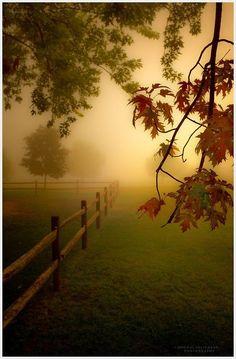 Naturbilder: schöne #Naturbilder #Natur #Herbst