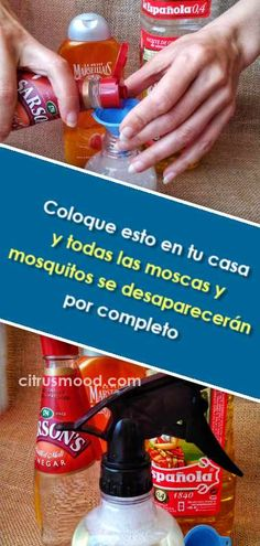 Coloque esto en tu casa y todas las moscas y mosquitos se desaparecerán por completo Health Fitness, Soap, Tips, House Ideas, Medicine, Cleaning Hacks, Household Tips, Useful Tips, Homemade Fly Repellant