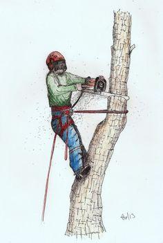 A4 signed print of Arborist ,Tree Surgeon stihl chainsaw Husqvarna Jobu Jonsered