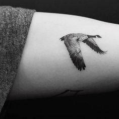 The goose tattoo on the left inner arm.