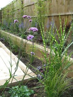 A friendly, professional Garden Design service from an experienced garden designer working in the East Midlands and throughout the UK Back Gardens, Small Gardens, Garden Projects, Garden Ideas, Dream Garden, Home And Garden, Back Garden Design, Small Backyard Landscaping, Garage Storage