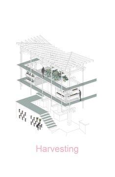 Galeria de Nest We Grow / Faculdade de Projeto Ambiental UC Berkeley + Kengo Kuma & Associates - 29