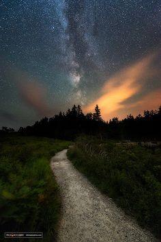 Night Walk | by miketaylorphoto