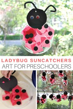 This fun ladybug craft is easy for preschoolers to make, and is a fun suncatcher for the window. Perfect for the bug-themed art table! #preschool #bugs #ladybugs #art #artsandcrafts #spring #classroom #teachers #homeschool #AGE3 #AGE4 #teaching2and3yearolds