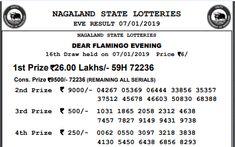 Lottery Sambad 11 55 AM | Lottery Sambad Today Result | Lottery