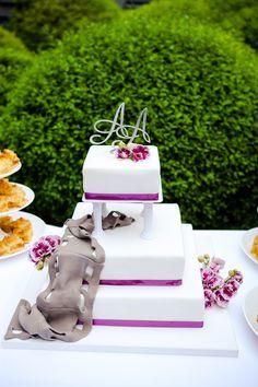 Hochzeitstorte weiß, lila mit Filmrolle