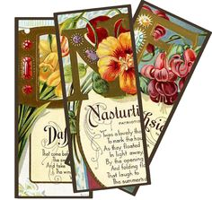 Wild@heart: Friday freebie - seedpacket bookmarks