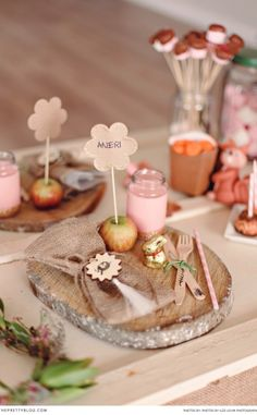 Fynbos Fairies in the Overberg Area | Family and Kids, Kids Parties | The Pretty Blog