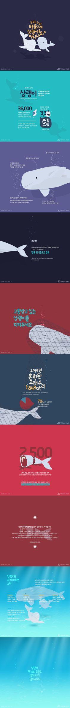 '한국의 인어' 상괭이를 지켜주세요 [인포그래픽] #Dolphin / #Infographic ⓒ 비주얼다이브 무단 복사·전재·재배포 금지