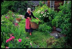 tasha tudor. Her love of gardening will always be a great inspiration to me.