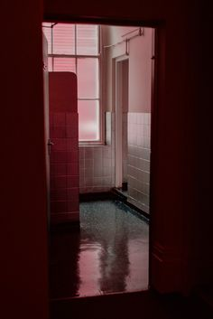 Fascinating Colors Photographed by Gabriella Achadinha