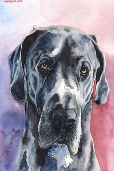 Great Dane 3 - Marmont Hill