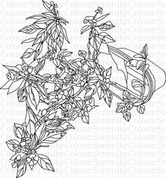 Adult Coloring Page Flower Pot Printable Instant Download #1 by ColourSerenity on Etsy