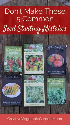 Avoiding these mistakes will lead to much more success with seed starting.