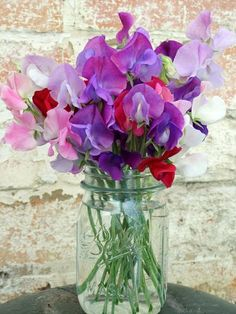 Old jar, sweet pea flowers. I love jars and vases outdoors and full of lovely flowers.