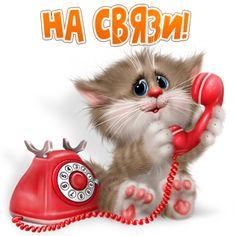 Комментарии к теме Teddy Bear Cartoon, Kitten Cartoon, Happy Monday Morning, Funny Emoticons, Kids Room Paint, Valentines Day Photos, Cat Drawing, Cute Illustration, Man Humor