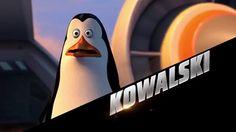 The Penguins Of Madagascar Kowalski