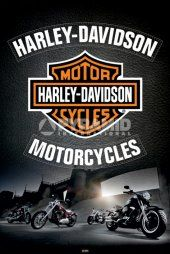Harley Davidson (Leather)