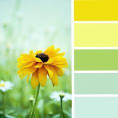 Pretty spring colours