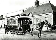 Horse drawn tram at Newtown. Between 1894 and 1898 a horse drawn tram replaced the steam tram between Newtown and St Peters. Old Photos, Vintage Photos, Sydney City, Royal Park, Horse Drawn, Main Street, Historical Photos, 19th Century, Around The Worlds