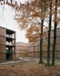 Züricher Wohnbauprojekt von E2A / Vegetation trotz Verdichtung - Architektur und Architekten - News / Meldungen / Nachrichten - BauNetz.de
