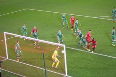 Liverpool v Ludogorets Champions league 16/09/14