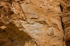 Pinturas rupestres Roca Benedí Jaraba