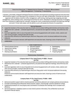 senior executive assistant office of the ceo resume example work