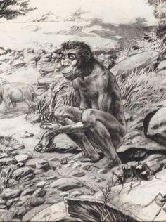 Australopithecus afarensis - by Tanino Liberatore