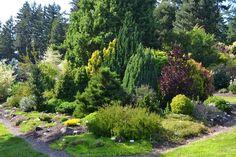 Sebright Gardens http://lindaletters.blogspot.com/