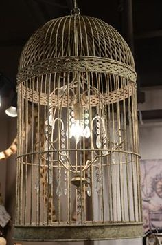 """Christine's bird obsession + Jen's french-country obsession = this stunning  cage chandelier.  We are speechless!  30"""" x 15"""" (24"""" long chain)  This item ships from our warehouse in 15 business days."""