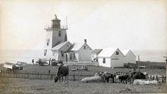 1874 Bon Portage Lighthouse  Photograph courtesy Nova Scotia Archives and Records