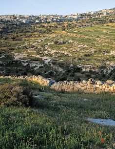 This photograph shows rocky hills and shepherds' fields in the foreground, with the modern city of Bethlehem in the background.
