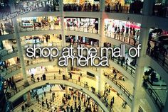 Shop at the Mall of America (check)
