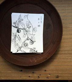 京都  木と根