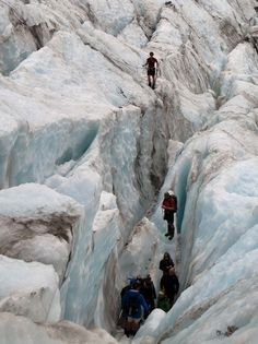Franz Josef or Fox Glacier?