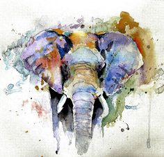 Splash Of Colour By Steven Ponsford Painting - Watercolor