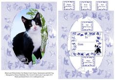 Black and White Kitten Cat Shaker Card Frame Sentiments an on Craftsuprint designed by Elaine Sheldrake - Another in my series of Cats, Dogs and other animals. This time it is the adorable Casper who lives with Tina O'Hara. I have added lots of Sentiments and also a Gift Tag and although I have placed this in the Shaker card section, you can of course use it in many different ways. Either as a Quick card front, or simply framed and tagged using foam pads or silicone gel. Look out for all of…