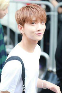 He is happy to be my oppa Woozi, Wonwoo, Jeonghan, Seungkwan, Joshua Seventeen, Seventeen Debut, Chris Brown, Vernon, Eminem