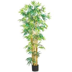 Nearly Natural 5' Multi Bambusa Bamboo Silk Tree >>> Details can be found by clicking on the image.