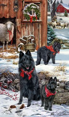 "New for 2014! Belgian Sheepdog Christmas Holiday Cards are 8 1/2"" x 5 1/2"" and come in packages of 12 cards. One design per package. All designs include envelopes, your personal message, and choice of greeting. Select the inside greeting of your choice from the menu below.Add your custom personal message to the Comments box during checkout."