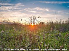 Busch Wildlife Prairie Sunset - #landscape #nature #sunset