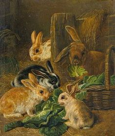 Rabbits by Alfred Richardson Barber (1841-1925).