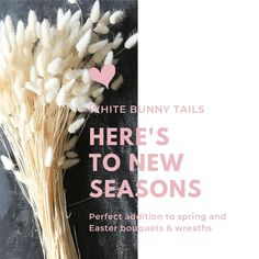 Soft and fuzzy, just like the real thing, Bunny Tails Grass is such a fun addition to spring bouquets, centerpieces, and wreaths.  Easter is coming, time to start planning those Easter vignettes and baskets!  Shop now! #wreaths #bunnytails  #easter #easter2020 #diycrafts #diybouquet #homedecoration #homedecor #easterdecor #drieddecor #driedplants #instadecor #decorating #homedetails #easterbasket #spring #springdecor