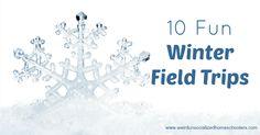 10 Fun Winter Field Trips ( http://feeds.feedblitz.com/~/256091918/0/weirdunsocializedhomeschoolers~Fun-Winter-Field-Trips/ )Kris Bales,10 Jan 06:00...