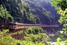 キハ181系「まつかぜ」福知山線 Electric Locomotive, Steam Locomotive, Japan Train, Speed Training, Post Apocalypse, Civil Engineering, Around The Worlds, Japanese, Landscape