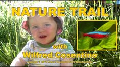 Nature Trail - with Wilfred Cosentino