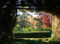 Garden windows   El Parque del Buen Retiro - Madrid
